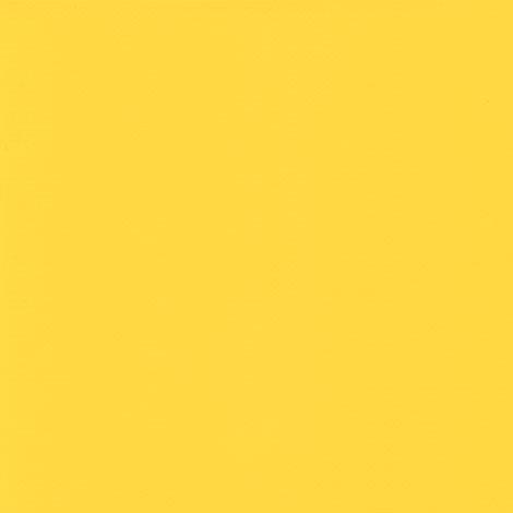 Buttercup (Sunflower) 2166