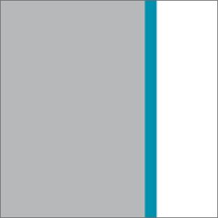 Grey/White/Lagoon Blue 50046