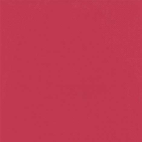 Raspberry (Fuchsia) 2150